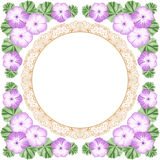 Vintage flower frame with geranium Royalty Free Stock Images