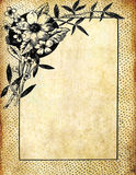 Vintage flower frame on old paper Royalty Free Stock Photography