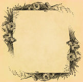 Vintage flower frame on old paper Royalty Free Stock Photos