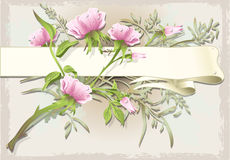 Vintage Flower Ornament with Banner Royalty Free Stock Photo