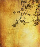 Vintage flower paper background. Backgrounds and textures Stock Images