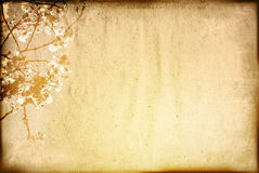 Vintage flower paper background Stock Photos