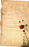 Vintage flower paper background Royalty Free Stock Image