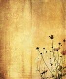 Vintage flower paper background Stock Image