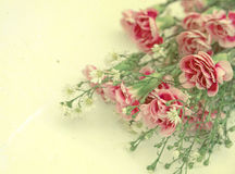 Vintage flower peony. Romantic vintage background Royalty Free Stock Images