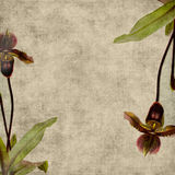 Vintage Flower Scrapbook Background royalty free illustration