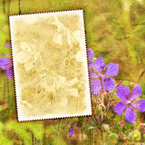 Vintage flower textured background. Vintage summer flowers background with canvas texture Stock Image