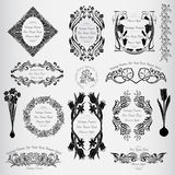 Vintage flower vintage banners withl frame Royalty Free Stock Photos