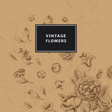 Vintage flowers Royalty Free Stock Photo