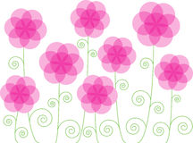 Vintage flowers background. Color illustration of romantic vintage flowers isolated on white background Stock Image