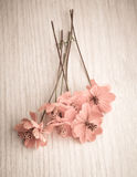 Vintage flowers on distressed wood. Royalty Free Stock Photography
