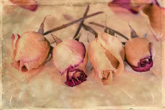 Vintage Flowers Royalty Free Stock Image