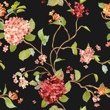 Vintage Flowers - Floral Hortensia Background - Seamless Pattern Royalty Free Stock Photos