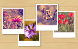 Vintage flowers photo Stock Images