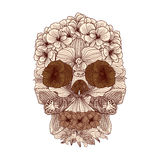 Vintage flowers skull composition Royalty Free Stock Photography