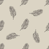 Vintage flying feather seamless pattern. Background Stock Photos