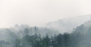 Vintage foggy landscape, forest with clouds Royalty Free Stock Photo