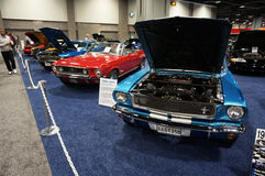 Vintage Ford Mustangs Image stock