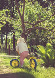 Vintage foto of Little child riding a bicycle on green grass Stock Image