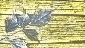 Vintage foto. Of leaf on wooden table background stock photos