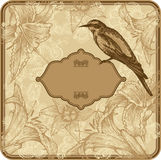 Vintage frame with blooming lilies and birds, hand. Drawing. Vector Illustration Stock Images