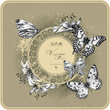Vintage frame with blooming lilies and butterflies. Hand drawing. Vector Illustration Stock Photography
