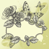 Vintage frame with blooming roses and butterflies, Royalty Free Stock Photos