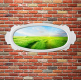 Vintage frame on brick wall with meadow Stock Photo