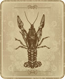 Vintage frame with crayfish, hand drawing Stock Photos