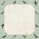 Vintage frame with cute birds Royalty Free Stock Photo