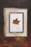 Vintage frame decorated with spider's web and dry maple leaf Stock Photos