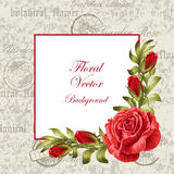 Vintage frame with flowers Royalty Free Stock Images