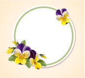 Vintage frame with pansy flowers. Vector round label for your design. Spring template Stock Photography