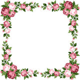 Vintage frame with pink roses. Stock Image