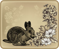 Vintage frame with rabbit, blooming roses and phlo Royalty Free Stock Image