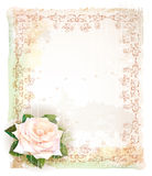 Vintage frame  with rose. Stock Photos