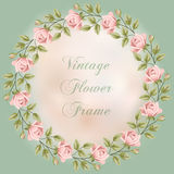 Vintage frame with roses Stock Photography