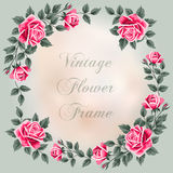 Vintage frame with roses Stock Photos