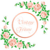 Vintage frame with roses Royalty Free Stock Image