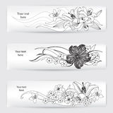 Vintage frame set with flower bouquet. Design floral elements Stock Image