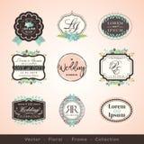 Vintage frames and design elements for wedding invitation  Stock Image