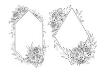 Vintage frames of peonies in botanical style Vector Illustration