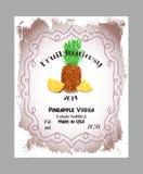 Vintage fruit alcohol labels. Stock Images