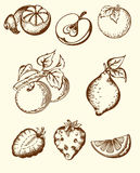 Vintage fruit icons Royalty Free Stock Photo