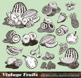 Vintage Fruits Collection Royalty Free Stock Photography