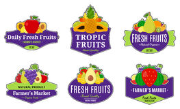 Vintage Fruits Logos and Design Elements Stock Images