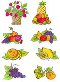 Vintage fruits set Royalty Free Stock Images