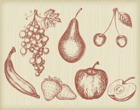 Vintage fruits set Stock Photography