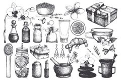 Vintage fset of hand drawn SPA and Beauty illustrations. Cosmetics and aromatic ingredients collection. Vector healthy life eleme. Nts stock illustration