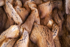 Vintage fur. Royalty Free Stock Photo